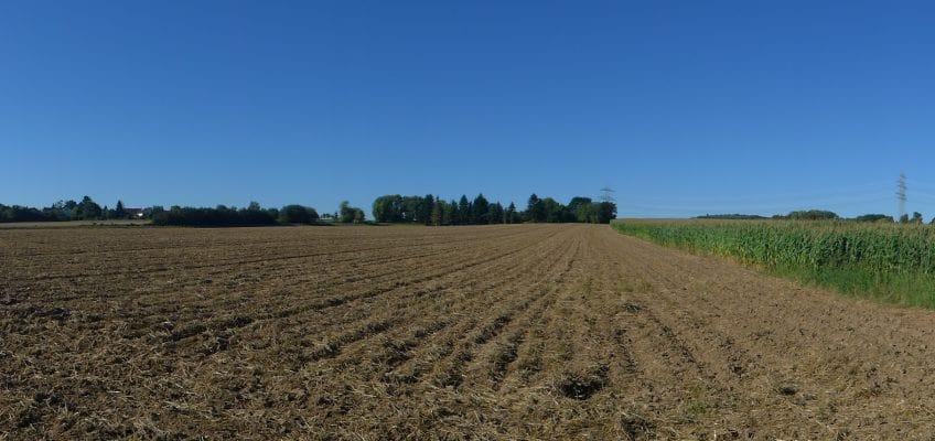 Buschkauler Feld – Verwaltung will nächsten Planungsschritt