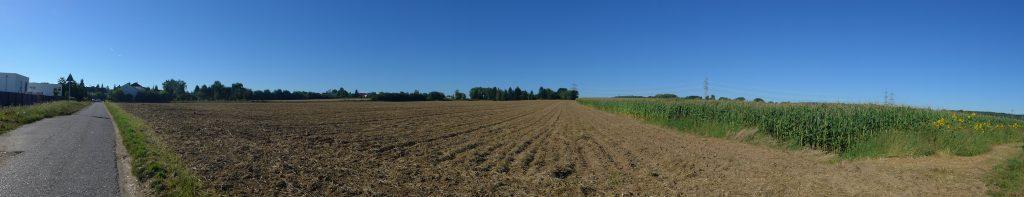 Das Buschkauler Feld